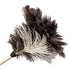 BWK13FD:  Boardwalk® Professional Ostrich Feather Duster
