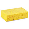 BWKCS3:  Boardwalk® Cellulose Sponge